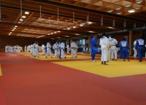 L'équipe de France cadets en stage à Cahors
